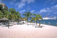 Cozumel Coral Reef Beach