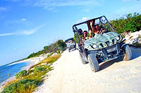 Cozumel Mini-Jeep Rhinos Tour