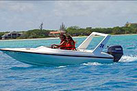Cozumel Jungle Tour with Speedboats