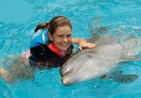 Dolphin Encounter at Dolphin Discovery