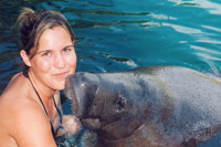 Swim With Manatees Cozumel