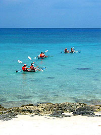 Cozumel Clear Kayak and Snorkel Excursion