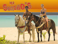 Beach Horseback Riding Mr Sancho S Cozumel