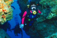 PADI Open Water Scuba Diving Certification