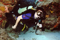 Dive Instructor Training Cozumel