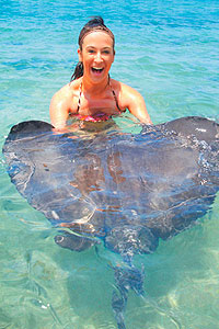 Swim with Stingrays Encounter, Cozumel Mexico