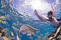 Stingray Beach, Cozumel Tours