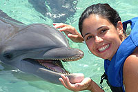 Xcaret Dolphins Encounter
