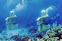 Cozumel Mini-Subs Excursions