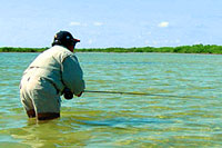 Cozumel Fly Fishing