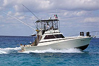 Cozumel Fishing