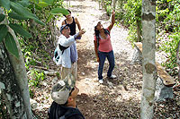 Hiking Excursion Cozumel