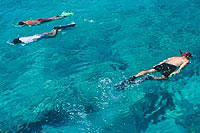 Private Snorkeling Tour