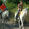 Cozumel Horseback Riding Excursion